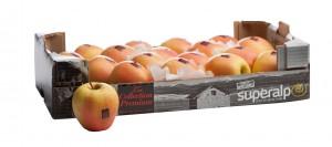 Pl collection premium pommes